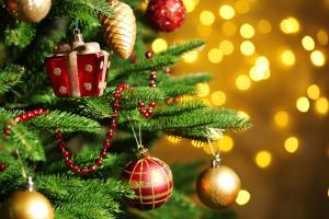 christmas activities around lancaster - christmas tree